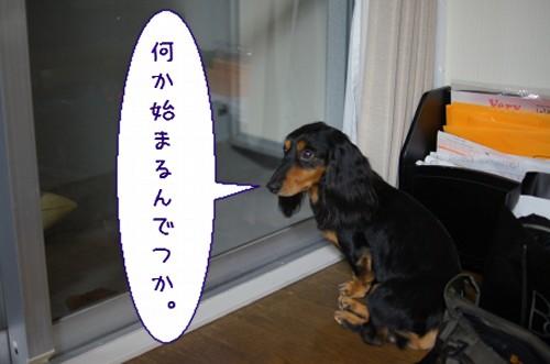 20120806_7.jpg