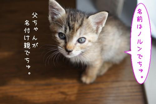 20120829_3.jpg