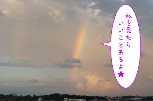 20120903_2.jpg