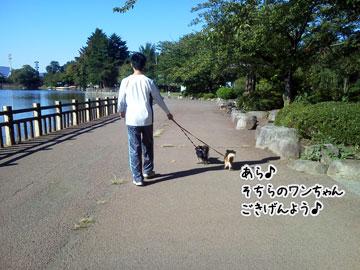 NEC_0008_20121008101410.jpg