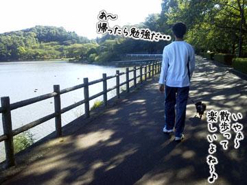 NEC_0009_20121008101425.jpg