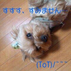 うめっちが・・・(-_-;)