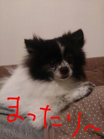 fc2_2014-11-19_11-41-04-579.jpg