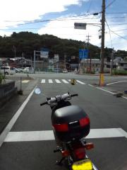 IMG_20121012_143854-1.jpg