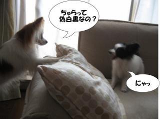 縺ォ繧・▲_convert_20120630214735