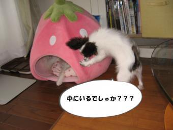 縺ェ縺祇convert_20120719170228