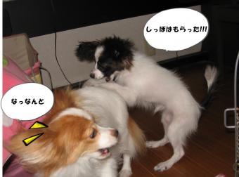 縺ェ繧薙→_convert_20120720154204