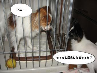 縺・s_convert_20120720154613