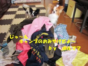 IMG_1300_convert_20120814163509.jpg