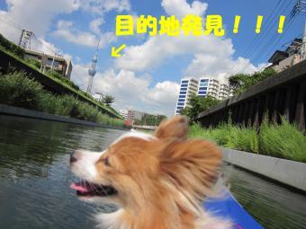 IMG_1549_convert_20120910165123.jpg