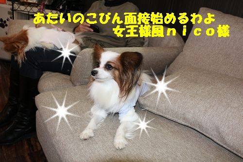 IMG_2789.jpg