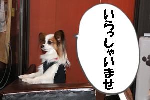 IMG_3373.jpg
