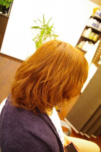 438_convert_20120729194852.jpg