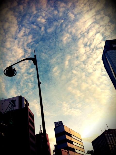 写真 (8)