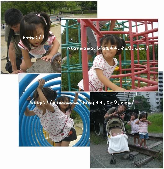 CIMG7008-0.jpg