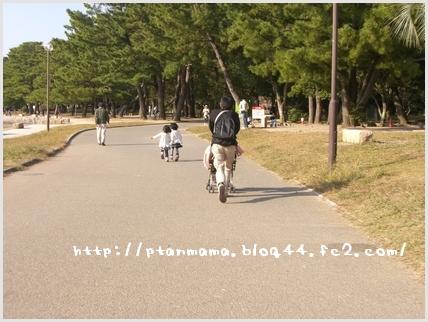 CIMG7626.jpg