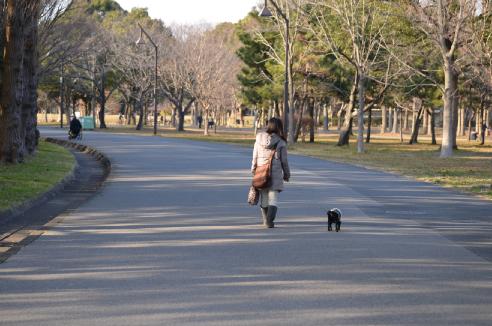 公園おさんぽ♪