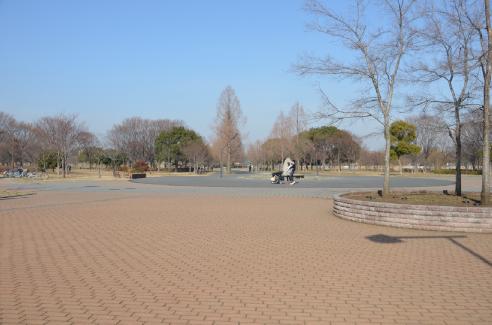 公園デカッ!