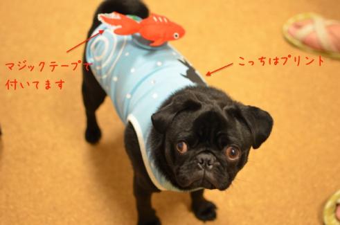 ぽよんぽよん揺れる金魚付きお洋服♡