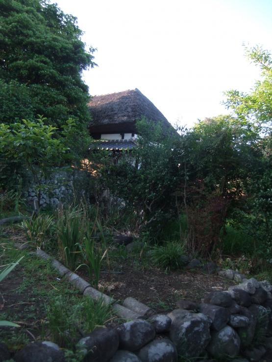 2012_0605AM_convert_20120613192654.jpg
