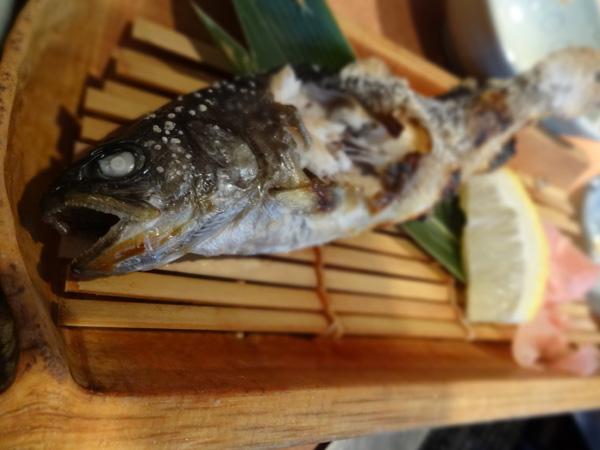 121123_天山温泉07川魚