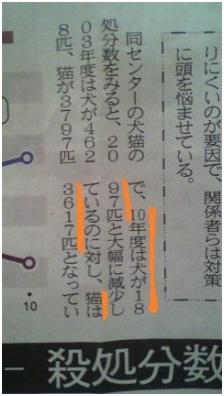 愛媛県動物愛護センターと愛媛新聞が殺処分数を少なく改ざんの浅知恵、犬たちのSOSミーママより003