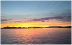 愛媛県南予地方の産まれた犬猫の赤ちゃんを海や川に流す風習と愛媛県東温市河原のストーカー006