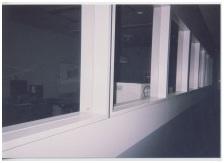 奈良県奈良市保健所とは?職員(松本善孝所長配下獣医)の犬猫虐待!!恐怖の毒ガストラック犬猫殺処分010