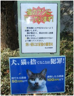 愛媛県動物愛護センターとは?捕獲側の公務員がドイツナチスの強制収容毒ガス室を現代に再現犬達SOS011