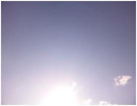 犬達を大量虐殺した愛媛県東温市市民環境課の近藤、渡部の当時の上司伊賀悌二課長の定例議会での発言009