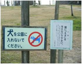 愛媛県松山総合公園とは?猫連続虐待死!両耳と脇腹を切られた猫が必死に餌場に!虐待あおる市の看板007
