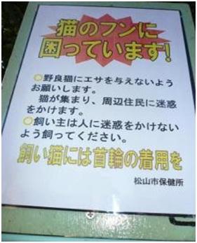 愛媛県松山総合公園とは?虐待をあおる看板が数々!石を投げられ死んだ白猫や両耳をそがれた猫がいます003