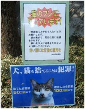 愛媛県松山総合公園とは?虐待をあおる看板が数々!石を投げられ死んだ白猫や両耳をそがれた猫がいます004