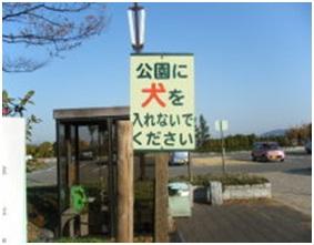 愛媛県松山総合公園とは?虐待をあおる看板が数々!石を投げられ死んだ白猫や両耳をそがれた猫がいます010
