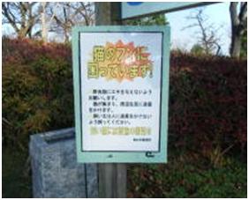 愛媛県松山総合公園とは?虐待をあおる看板が数々!石を投げられ死んだ白猫や両耳をそがれた猫がいます015