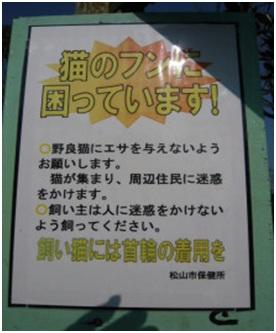 愛媛県松山総合公園とは?虐待をあおる看板が数々!石を投げられ死んだ白猫や両耳をそがれた猫がいます016