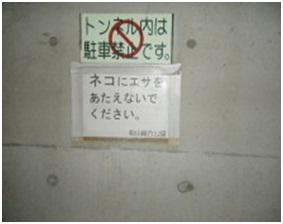 愛媛県松山総合公園とは?虐待をあおる看板が数々!石を投げられ死んだ白猫や両耳をそがれた猫がいます019