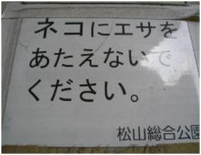 愛媛県松山総合公園とは?虐待をあおる看板が数々!石を投げられ死んだ白猫や両耳をそがれた猫がいます020