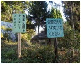 愛媛県松山総合公園とは?虐待をあおる看板が数々!石を投げられ死んだ白猫や両耳をそがれた猫がいます021