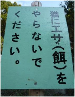 愛媛県松山総合公園とは?虐待をあおる看板が数々!石を投げられ死んだ白猫や両耳をそがれた猫がいます022