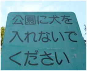 愛媛県松山総合公園とは?虐待をあおる看板が数々!石を投げられ死んだ白猫や両耳をそがれた猫がいます023