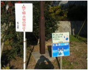 愛媛県松山総合公園とは?虐待をあおる看板が数々!石を投げられ死んだ白猫や両耳をそがれた猫がいます024