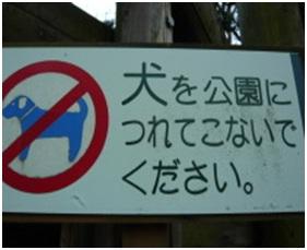 愛媛県松山総合公園とは?虐待をあおる看板が数々!石を投げられ死んだ白猫や両耳をそがれた猫がいます028