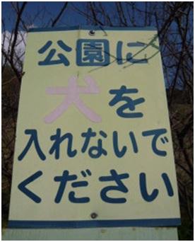 愛媛県松山総合公園とは?虐待をあおる看板が数々!石を投げられ死んだ白猫や両耳をそがれた猫がいます031