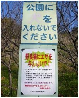 愛媛県松山総合公園とは?虐待をあおる看板が数々!石を投げられ死んだ白猫や両耳をそがれた猫がいます032