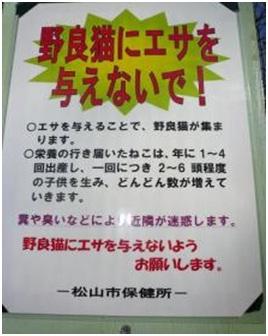 愛媛県松山総合公園とは?虐待をあおる看板が数々!石を投げられ死んだ白猫や両耳をそがれた猫がいます033