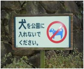 愛媛県松山総合公園とは?虐待をあおる看板が数々!石を投げられ死んだ白猫や両耳をそがれた猫がいます039