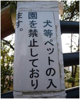 愛媛県松山総合公園とは?虐待をあおる看板が数々!石を投げられ死んだ白猫や両耳をそがれた猫がいます040