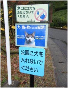 愛媛県松山総合公園とは?虐待をあおる看板が数々!石を投げられ死んだ白猫や両耳をそがれた猫がいます041