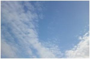 山口県防府市役所ワイヤー犬捕獲公務員周辺からの脅しや隠ぺい&花ポリ~スクワットダンスで筋肉痛002